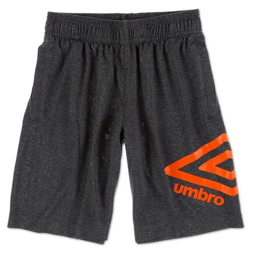 6239e23f6 Boys Active Logo Basketball Shorts - Grey (8-20)